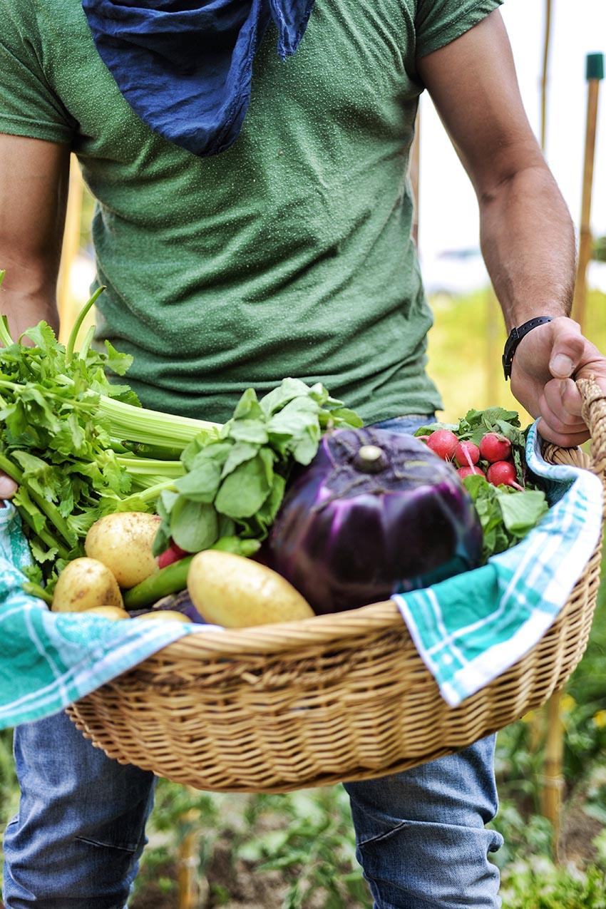 Un de cada cinc espanyols (20%) afirma seguir una dieta vegetariana, vegana o flexitariana.